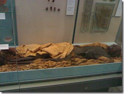 A mummy unearthed